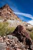 Yuma, AZ-North Star Company 2013-02-02-103