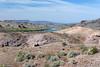 AZ-Yuma-Martinez Lake-Imperial Wildlife Refuge-Smoke Tree Point-2006-02-01-0002