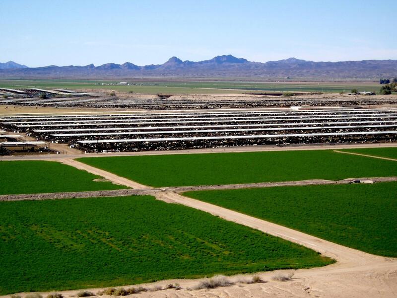 AZ-Mohawk Pass-McElhanaey Cattle Company-2004-01-03-0002