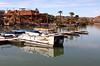 AZ-Yuma-Martinez Lake-2006-02-04-0018
