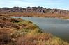 AZ-Yuma-Martinez Lake-Imperial Wildlife Refuge-Mesquite Point-2006-02-01-0003