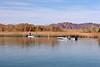 AZ-Yuma-Martinez Lake-2006-02-04-0005