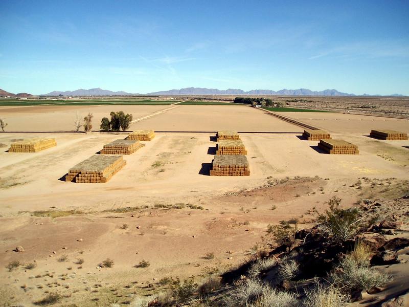 AZ-Mohawk Pass-McElhanaey Cattle Company-2004-01-03-0007