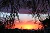AZ-Yuma-Sunset-2006-10-13-0001