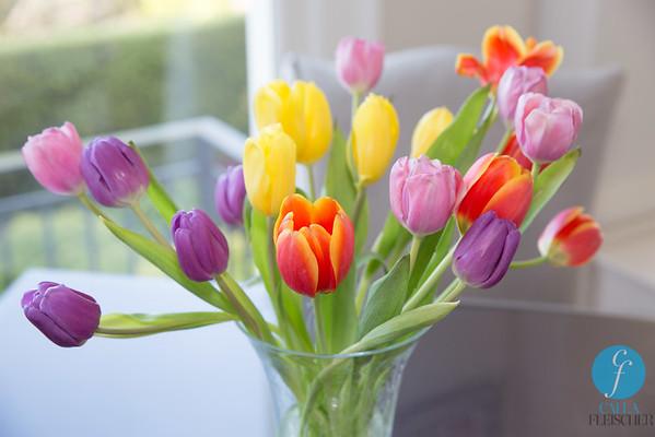 2015-04-05 - Easter