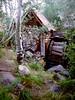 V-CA-Columbia State Park-1985-07-20-S0003
