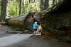 CA-Arnold-Calavares Big Tree State Park-2005-08-21-0014
