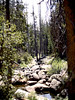 V-CA-Yosemite National Park-1985-07-18-S0003