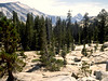 CA-Yosemite National Park-1985-07-18-S0007