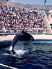 V-CA-Sea World-1984-06-04-S0003