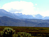 CA-Mono Basin National Forest-2003-08-06-0001