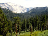 CA-Yosemite National Park-1985-07-18-S0006