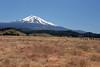 CA-Mt. Shasta-2005-07-02-0005