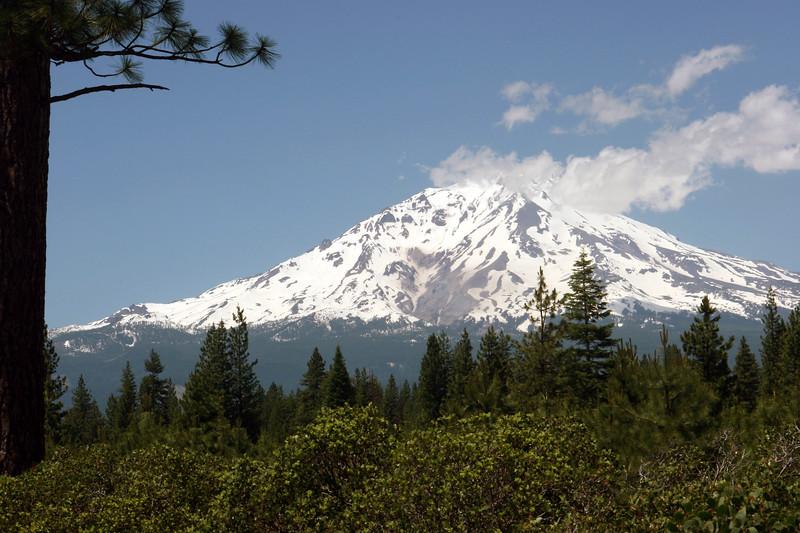 CA-Mt. Shasta-2005-07-02-0011