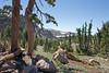 CA-Lassen Volcanic National Park-2006-09-04-0003