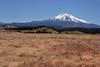 CA-Mt. Shasta-2005-07-02-0004