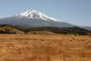 CA-Mt. Shasta-2005-07-02-0001