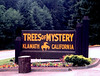 CA-Klamath-Trees of Mystery-1985-01-08-S0003