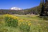 CA-Lassen Volcanic National Park-Kings Creek-2006-09-04-0003