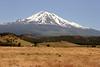 CA-Mt. Shasta-2005-07-02-0002