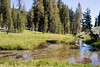 CA-Lassen Volcanic National Park-Kings Creek-2006-09-04-0005