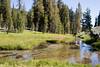 CA-Lassen Volcanic National Park-Kings Creek-2006-09-04-0005