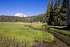 CA-Lassen Volcanic National Park-Kings Creek-2006-09-04-0004