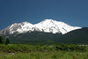 CA-Mt. Shasta-2005-07-02-0008