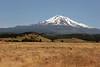 CA-Mt. Shasta-2005-07-02-0003