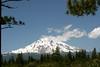 CA-Mt. Shasta-2005-07-02-0009