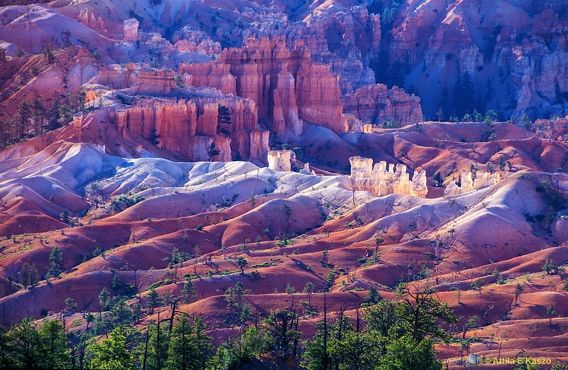Queen's Garden<br /> Bryce Canyon NP, Utah, USA