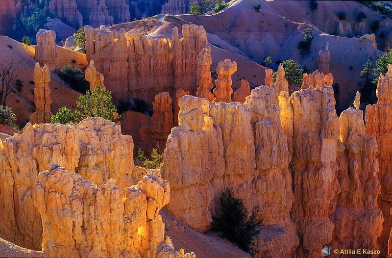 Fairyland Canyon<br /> Bryce Canyon NP, Utah, USA