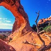 Partition Arch<br /> Arches NP, Utah, USA