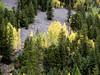 CO-Durango-to-Silverton by Rail Road-2001-09-21-0035