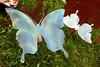 CO-Silverton-2005-09-06-0081