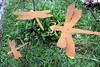 CO-Silverton-2005-09-06-0082