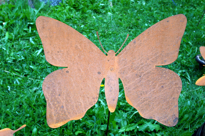 CO-Silverton-2005-09-06-0083