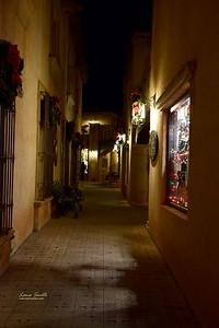 Sedona Christmas 2014 (41) sig