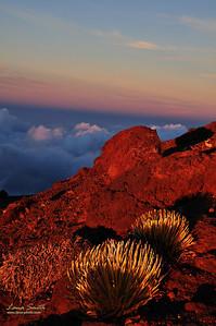 Hawaii Maui Haleakala NP sig