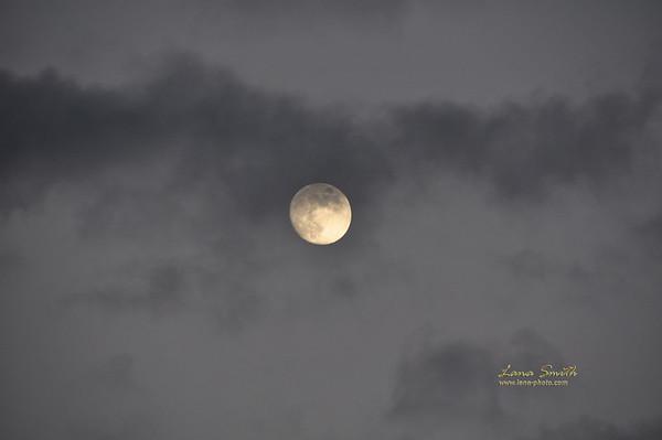 Full  moon over Hawaii sig