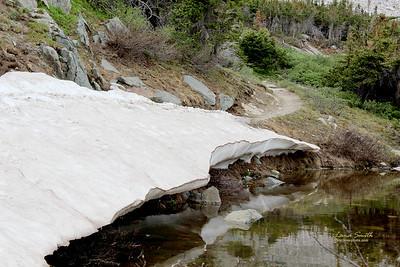 Snowy Range, July 2013 (101), WY sig