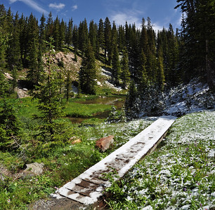 Snowy Range, Icy bridge over summer bloom in August, WY sig