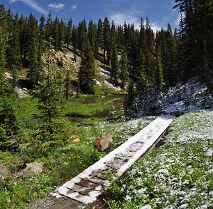 Snowy Range, Icy bridge over summer bloom in August, WY sig