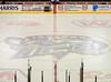20100320_USHL-U18-Indiana-Ice_0156