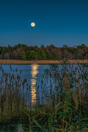 Super moon on the Huntingfield Creek