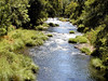 OR-Cottage Grove-Row River-2003-07-31-0003