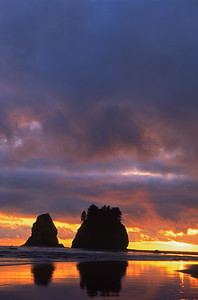 Sea stacks at sunset, Olympic National Park