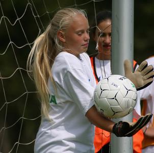 Fjerristler, Denmark Training, 2002-July-12a 099sq