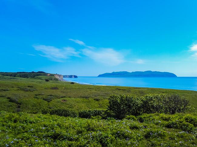 Kodiak island alaska