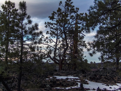 Sunset Crater NM - 2013